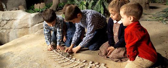 Niños-Dinosaurios