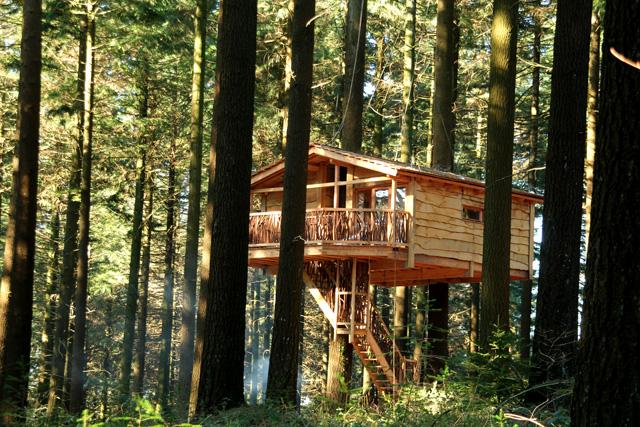 Dormir en una caba a en la copa de un rbol - Cabanas de madera en arboles ...