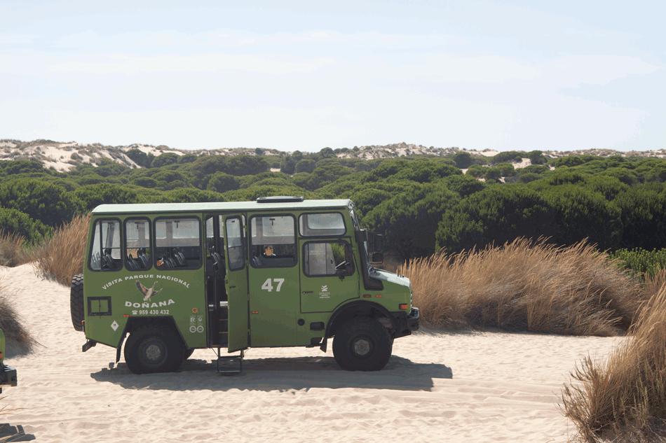 Doñana 4x4