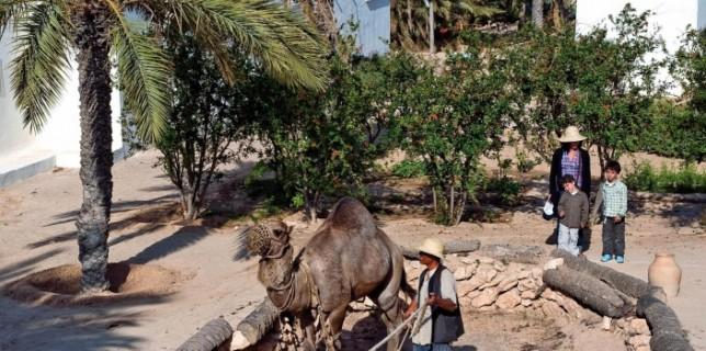 Parque temático en Túnez