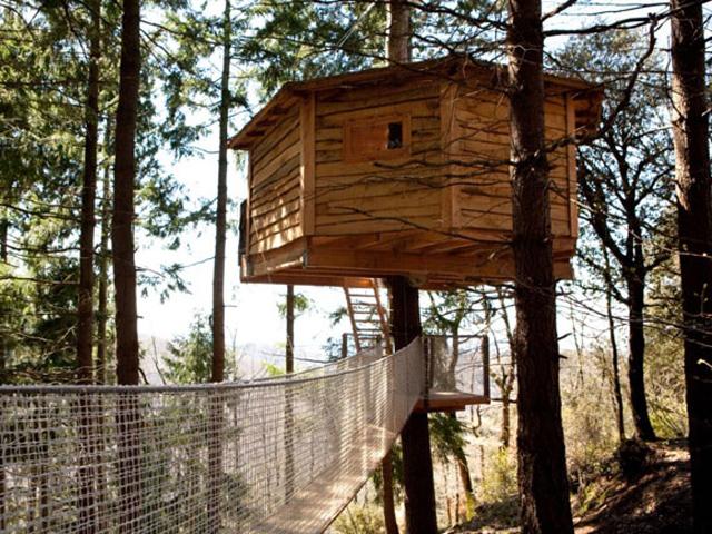 Dormir en una caba a en la copa de un rbol - Cabana en los arboles ...