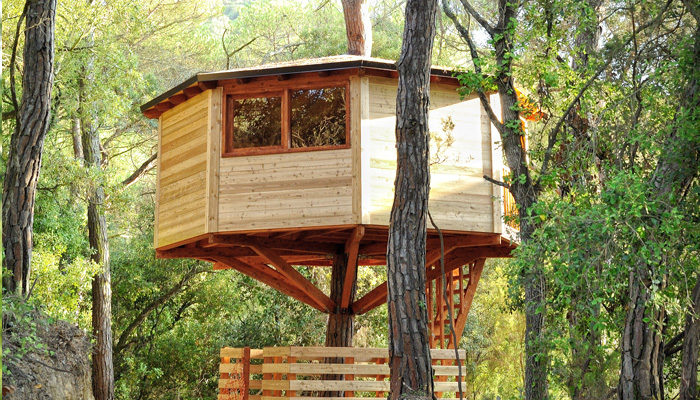 Una cabaña en la copa de un árbol