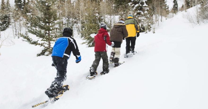Actividades en la nieve en familia