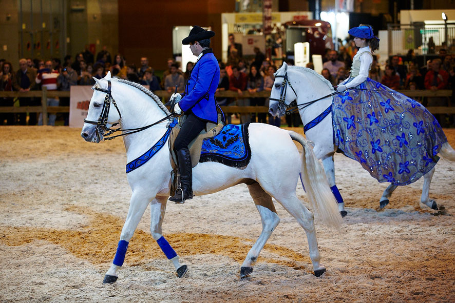 madridhorseweek-domacaballos