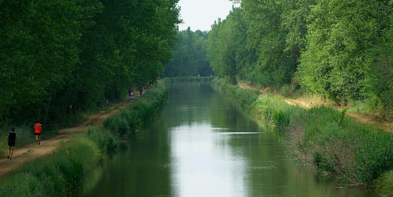 Descubre la Ruta del Vino de Cigales por el Canal de Castilla