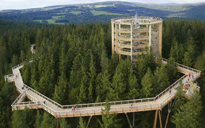Bosques de la República Checa, paseos entre las nubes