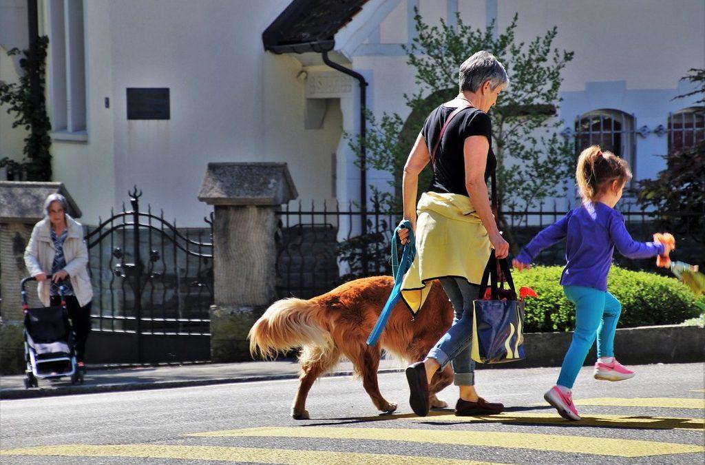 Viajar con niños y perros, difícil pero no imposible
